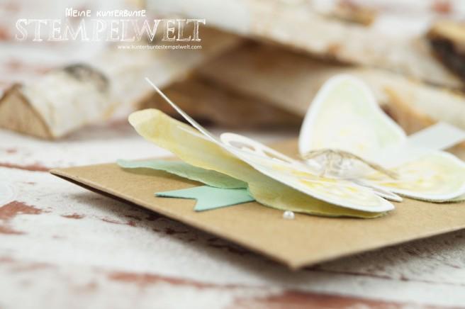 7Stampin´ Up!_Watercolor Wings_Gutschein_Rubbellos selber machen_Thinlitsform Umschlag für Geschenkkarte_Framelits Schmetterling_Dymo_3