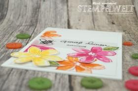 Stampin´ Up!_Garden in Bloom_Signalfarben_Kartenset_flüsterweiße Akzente_9
