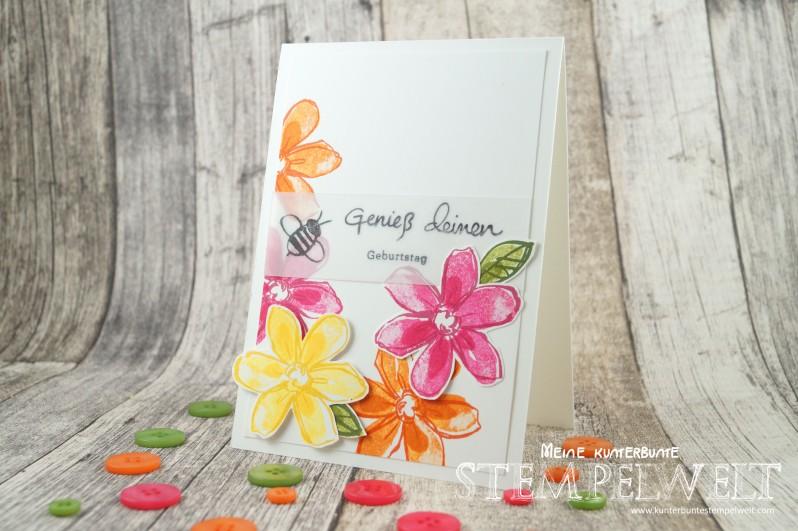 Stampin´ Up!_Garden in Bloom_Signalfarben_Kartenset_flüsterweiße Akzente_7