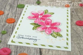 Stampin´ Up!_Garden in Bloom_Signalfarben_Kartenset_flüsterweiße Akzente_5