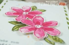 Stampin´ Up!_Garden in Bloom_Signalfarben_Kartenset_flüsterweiße Akzente_6