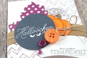 Stampin´ Up!_Blog Hop_Thinlits Square Pillow Box_Herbst_Weihnachten_Halloween_Zwischen den Zweigen_6