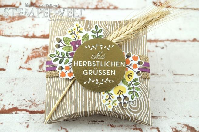 Stampin´ Up!_Blog Hop_Thinlits Square Pillow Box_Herbst_Weihnachten_Halloween_Zwischen den Zweigen_1