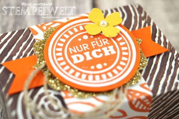 Stampin´ Up!_Envelope Punch Board_Stanz- und Falzbrett für Umschläge_Designerpapier am Waldrand_Geburtstagskracher_Gastgeschenk_Goodie_2