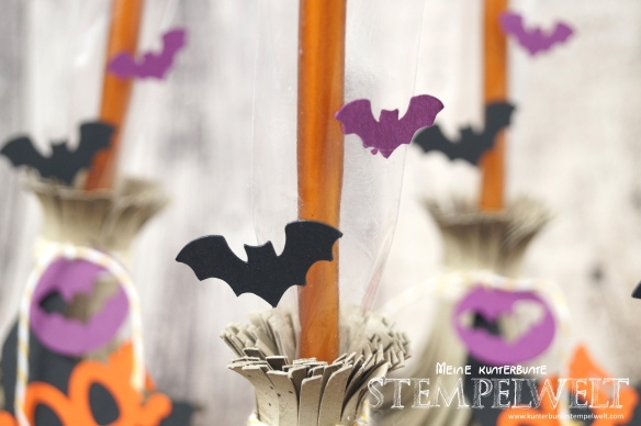 Stampin´Up!_Hexenbesen_Witch Broom_Halloween Goodies_Georgeous Grunge_Cameo Silhouette_Anleitung_5
