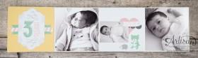 Stampin´ Up! - Artisan Blog Hop - Project Live - Hallo Baby - Mini Album - Stanz und Falzbrett für Geschenkschachteln - 3