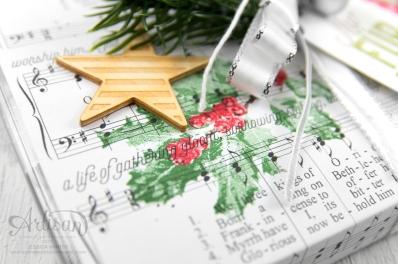 Stampin´ Up! _ Harmonische Feiertage _ Acetatschachteln für Karten _ Weihnachtliche Etiketten _Akzente Herzen und Sterne _2