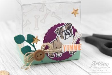 stampin up _ mein lieblingspatz _ framelits rankenrahmen _ transparente mini geschenkschachtel _ 2